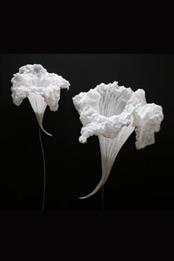 Petite applique blanche Fleur aquatique . Les artisans d'art.
