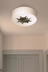 Round ceiling lamp and patinated black bronze rosette. Objet insolite.