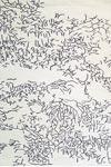 Tapis de salon Nature Négatif 170x240cm. Toulemonde Bochart.
