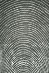Tapis de salon Ondine gris 170x240cm. Toulemonde Bochart.